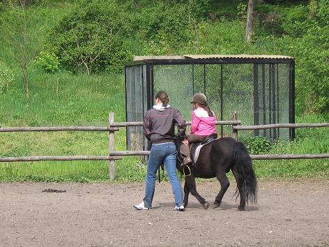Zoobotanischer Garten in Thorn (Toruń) - Ponyreiten